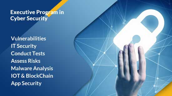Executive Program in Cyber Security