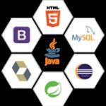 Full Stack Java Developer